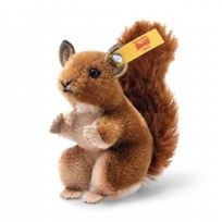 Wildlife Giftbox Squirrel